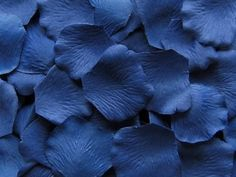 Silk Rose Petals in Sapphire - 100 Piece Bag Azul Pantone, Pantone Color, Pantone Blue, Pantone 2020, Silk Rose Petals, Silk Roses, Just In Case, Just For You, Prussian Blue