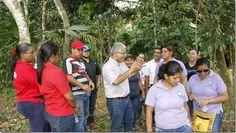 Cuatro empresas, interesadas en construir parque en Panamá norte por $16.9 millones http://www.inmigrantesenpanama.com/2016/01/29/cuatro-empresas-interesadas-construir-parque-panama-norte-16-9-millones/