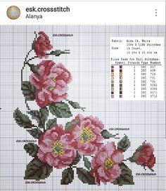 Cross Stitch Rose, Cross Stitch Samplers, Cross Stitch Flowers, Cross Stitch Kits, Cross Stitch Charts, Cross Stitching, Cross Stitch Embroidery, Cross Stitch Patterns, Embroidery Tattoo