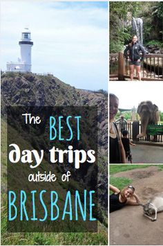 A guide to some of the best day trips to take close to Brisbane, Australia.