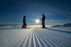 Trysil by Skistar Trysil, via Flickr This Girl Can, Visit Norway, Midnight Sun, Cross Country Skiing, Winter Sports, Hot Springs, Snow, Travel, Sports