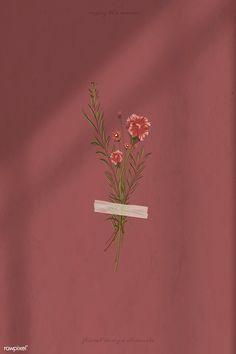 Flower Background Wallpaper, Flower Phone Wallpaper, Wallpaper Iphone Cute, Tumblr Wallpaper, Flower Backgrounds, Wallpaper Backgrounds, Aesthetic Pastel Wallpaper, Aesthetic Wallpapers, Minimalist Wallpaper