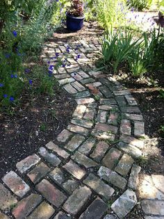 Love this Pinner's brick path! Our newly purchased forty-one year old home, which I promptly named Magnolia House, was built in The exterio. Cottage Garden Design, Cottage Garden Plants, Herbs Garden, Garden Planters, Brick Pathway, Paver Path, Paving Ideas, Pathway Ideas, Old Bricks