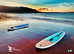 Based in Torbay, South Devon, Ocean Monkeys supply paddle boards for all ages and abilities. We also have some of the best coastline around the UK for you to enjoy your paddle board. Sup Paddle Board, Sup Stand Up Paddle, Present Lists, South Devon, Paddleboarding, Water Transfer, New Adventures, Water Sports