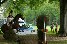 6 Event horse/dressage/cross country/show jumping/equine photography