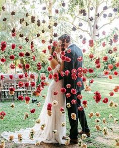 Red Carnation Hanging Flower Backdrop beautiful photo