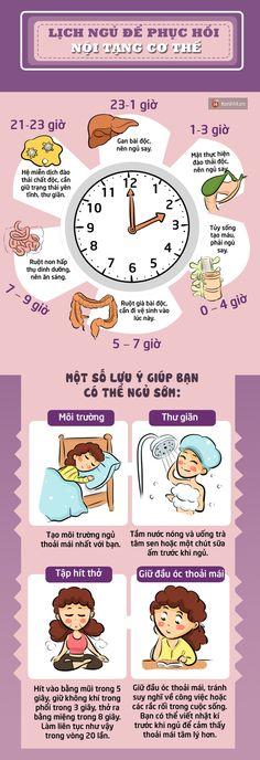 Ngủ đúng giờ để phục hồi các nội tạng trong cơ thể - Ảnh 1.