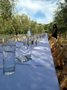 Getting ready for a farm-to-table dinner in the olive orchards with Outstanding in the Field.