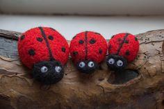 Ladybug fridge magnet SET of 3. Felted magnets. Wool by WooolyWool