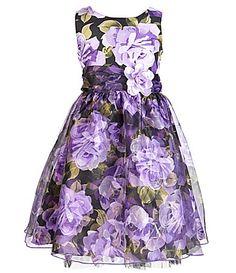 Sweet Heart Rose 2T6X FloralPrint Dress