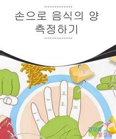 손으로 음식의 양 측정하기  좋은 식습관을 지킬 때 고려해야 할 한가지는 하루동안 섭취하는 음식의 양이다.