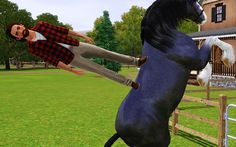 Sims logic - ok, this is wrong in so many ways... 1) He's standing on a horse 2) The horse is blue 3) The laws of physics are gone 4) He doesn't seem to give a damn that he's magically standing on a gravity defying horse 5) WTF?!????!!!!!!????!!!!!!!!!!!!!