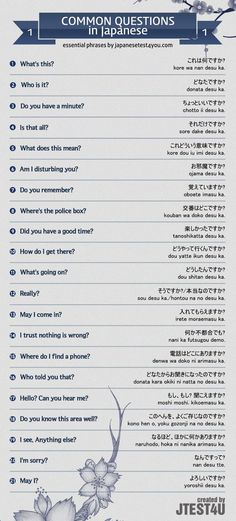 Educational infographic : Infographic: common questions in Japanese part 1. japanesetest4you.