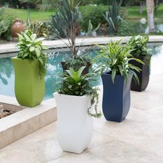 beautiful statement planters from @hayneedle used for the poolside patio room