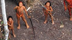 Uncontacted Amazon Tribe: First ever aerial footage on Vimeo by Survival International | Flickr - Photo Sharing!