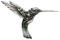 Black n White Hummingbird Tattoo Design