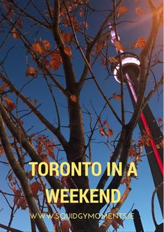 Toronto in a Weekend - Your city break guide to Canada's most cosmopolitan city!
