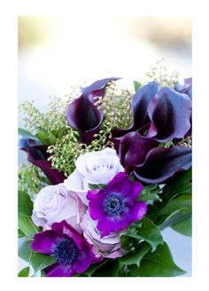 Galleries « David Tutera Wedding Blog • It's a Bride's Life • Real Brides Blogging til I do!