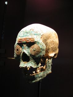 Aztec skull with mosaic inlay of turkois, shells and mother-of-pearl, Mexico.       On the forehead of the skull a snake has been depicted. Probably this person had a special connection to the Aztec god Quetzalcoatl, the feathered snake. Mixtec craftsmen were very skilled in the art of making mosaics -only a few objects of their work remain.