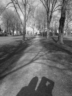 Het park in Meppel