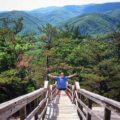 I climbed a mountain and I turned around