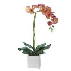 Plantas artificiales con flores. Planta artificial flores orquideas bicolor. Tallo alambrado. Detalle floral decorativo. Aspecto natural. Maceta cerámica. Alto 55 cm