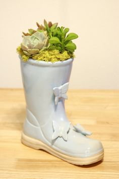 Another World Boot Garden by AnotherWorldPlants on Etsy, $65.00