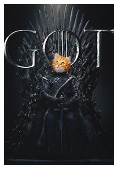 Game Of Thrones Poster, Portraits, Jolie Photo, Bob Marley, Cat Art, Pet Birds, Sticker, Posters, Wallpaper