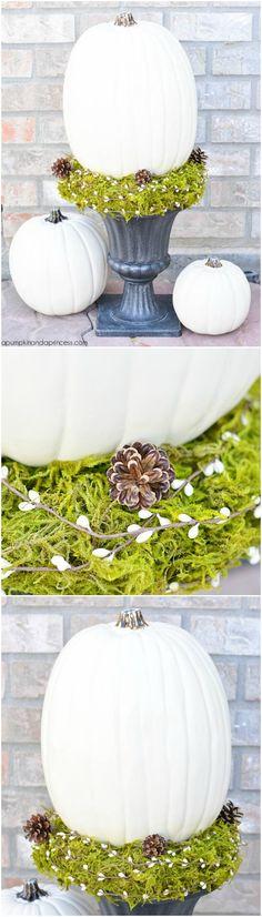 DIY Pumpkin Topiary tutorial Crystal A Pumpkin & A Princess halloween topiaries Pumpkin Topiary, Diy Pumpkin, Diy Halloween Decorations, Halloween Crafts, Fall Decorations, Holiday Fun, Christmas Fun, I Fall To Pieces, Diy Thanksgiving