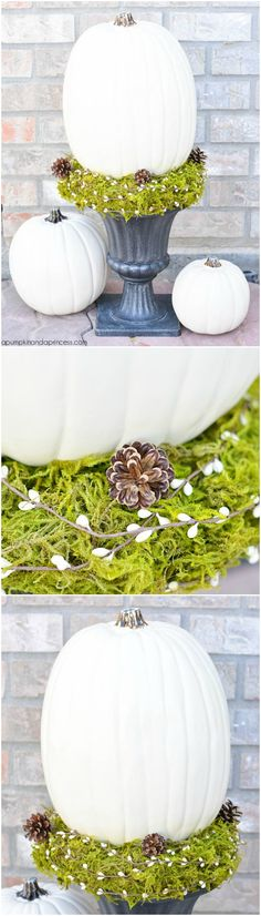 DIY Pumpkin Topiary tutorial