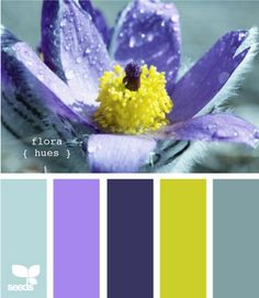 Flora hues (I don't particularly care for that ugly greenish/yellow, but the rest I really like)