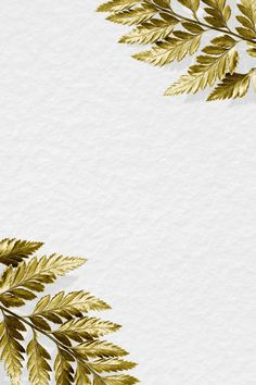 White And Gold Wallpaper, White Background Wallpaper, Gold Background, Flower Backgrounds, Wallpaper Backgrounds, Invitation Background, Watercolor Wallpaper, Flower Frame, Charts