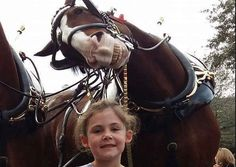 Horse Photobombs Little Girl–And It's Great! Please also visit www.JustForYouPropheticArt.com for inspirational art and stories. Thank you so much!