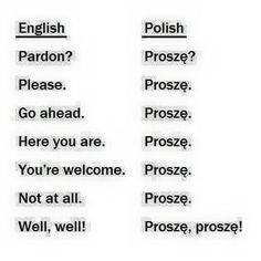 Lol, so many uses for proszę ! Polish Alphabet, Polish To English, Learn Polish, Polish Words, Polish People, Polish Memes, Better English, Polish Language, Language Lessons