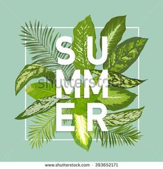 Find Summer Design Tropical Leaves Background Vector stock images in HD and millions of other royalty-free stock photos, illustrations and vectors in the Shutterstock collection. Thousands of new, high-quality pictures added every day. Cute Wallpaper Backgrounds, I Wallpaper, Cute Wallpapers, Tropical Leaves, Tropical Flowers, Style Tropical, Closer To The Sun, Leaf Background, Palm Tree Print