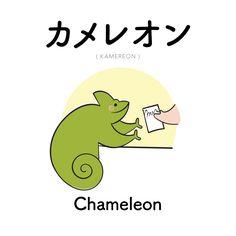 [212] カメレオン   kamereon   chameleon
