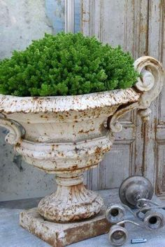 Cast iron urns turn rusty and shabby and yet look so classy! [via Atelier de Campagne] Container Plants, Container Gardening, Urn Planters, Topiary Plants, Potted Plants, Pot Jardin, Garden Urns, Herb Garden, Deco Floral