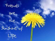 Friends are the sunshine of life http://decentscraps.blogspot.com/