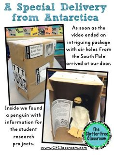 Clutter-Free Classroom: Penguins: A look at our two week, intergrated, Thematic Unit {Common Core Aligned}. Includes printables, worksheets, art/ craft projects, book lists, and online video links for 2nd, 3rd, 4th, 5th grade and home schoolers.