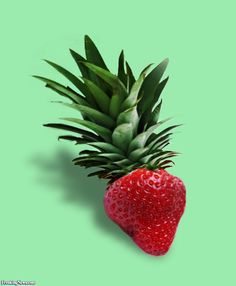 pineapple photoshop - Buscar con Google