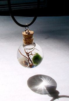 Live Marimo Moss Ball Orb with Pearl Mini Terrarium Necklace. $22.99, via Etsy.