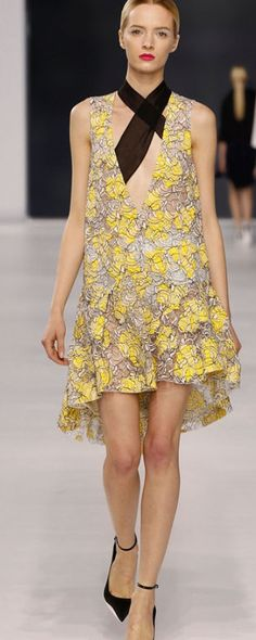Christian Dior -Ready to Wear - 2014 -♥ | http://fifiqin.com