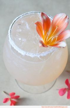 Honey Citrus Cocktail