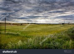 Rural landscape, dramatic sky, and sun rays light over fields of Olivenza countryside, Badajoz, Extremadura, Spain