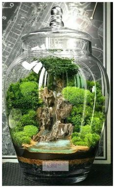 Home DECOR Mini Terrarium / Wasserfall – Home DECOR Mini Terrarium / Waterfall – Waterfall terrarium with live moss plants in hexAmazing big waterfall terrarium with Raku geWalkways Home Decor Project Ideas & Tutorials Mini Terrarium, Terrarium Scene, Glass Terrarium, Terrarium Ideas, Fairy Terrarium, Terrarium Decorations, Fish Tank Terrarium, Terraria, Bonsai Garden
