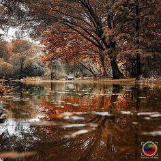 Colors Of The Day   Photo by   @bu_khaled  Congratulations!   Selected by  @Zuckerwatte1907  Follow  @Colors_of_day Tag  #Colors_of_day    #Colors_of_day #igphotoworld #gulumseaska #ig_costarica #grafimx #ig_portugal #sengajaphoto #wonderful_places #beautifuldestinations #fantastic_earth #comeseeturkey #hot_shotz #photo_turkey #bestvacations #ig_exquisite #rockin_shotz #photooftheday #tgif_longxpo #magicpict #longexpoelite #my_sunset #instaitalia  #photomagicworld by colors_of_day