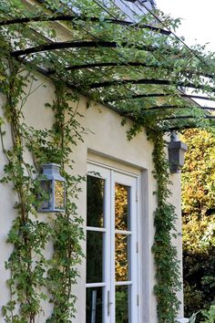 Arbor - diffuse an tall exterior wall, add shade and/or planting structure, create interest - frame spaces, doors and windows.