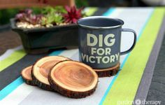 Natural Branch Coasters