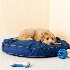 Extra-Large Dog Bed: Dog beds are among the most essential of the dog supplies because of the important role they play in ensuring adequate rest and relaxation for the precious pooches. http://DogSiteWorld.com/ - DogSiteWorldstore... Extra-Large Dog Bed
