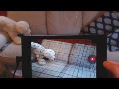 Что такое 3D сканер и как он работает?
